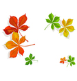 fall colorful chestnuts leaves vector image