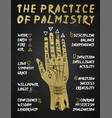 palmistry chiromancy - gold hand on a blackboard vector image vector image