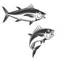 set of tuna icons vector image vector image