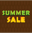 summer sale poster design vector image