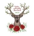 watercolor of deer head vector image