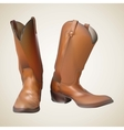 beautiful cowboy boots vector image