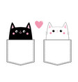 black white cat love couple in the pocket pink vector image vector image
