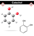 Catechol - chemical formula vector image vector image