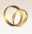 Couple of wedding rings vector image
