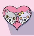 cute cat couple animal design vector image vector image