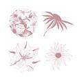 different flower set vector image vector image