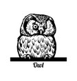 peeking funny owl - funny owl out - face vector image vector image
