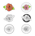 rose flower different logo design set vector image vector image