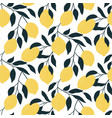 seamless pattern with citrus fruits hand drawn vector image vector image