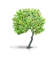 tree isolated on white vector image vector image