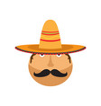 man with a mexican hat vector image