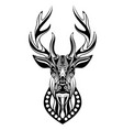 dear head statue with entangle doodle art vector image