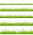 grass border collection on vector image
