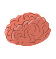 human brain cartoon vector image