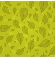 Skeletonized leaves on a green background vector image vector image