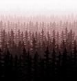 Background nature forest landscape pine fir trees vector image vector image