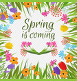 beautiful spring background with early vector image