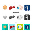 design of body and human symbol collection vector image