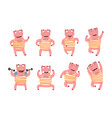 flat set pink humanized pig in different vector image vector image