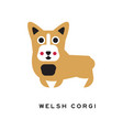 Funny welsh corgi dog character in cartoon style