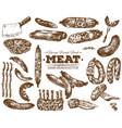 hand drawn fresh farm meat bbq sketch vector image