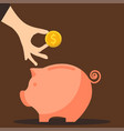 pig money box vector image