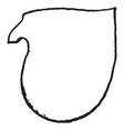 tilting shield are escutcheon in heraldry vintage vector image vector image