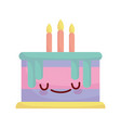 birthday cake with candles celebration cartoon vector image vector image