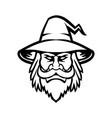 black wizard sorcerer or magician head mascot vector image vector image