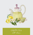 colorful drawing of teapot with strainer vector image vector image