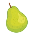 green pear fruit vector image