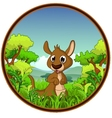 Kangaroo with forest background vector image