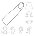 part of the body limb outline icons in set vector image vector image