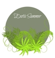 Summer Tropical Plants and Hibiscus Flowers in vector image vector image