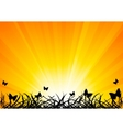 background with butterfly vector image vector image