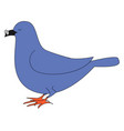 blue dove with glasses on white background vector image vector image