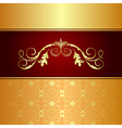 luxury background for design card - vector image vector image