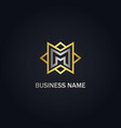 m initial star line company gold logo vector image vector image