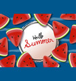 watermelon background summer banner vector image vector image