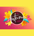 autumn sale banner with hand lettering and vector image vector image