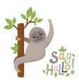 cute cartoon sloth sitting on a tree vector image