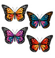 multicolored butterflies set vector image