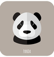 Animal Portrait With Flat Design Panda vector image