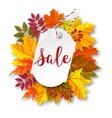 Autumn sale label vector image vector image