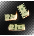 Burning money on transparent background vector image