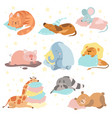 cute animals sleeping set cat dog mouse pig vector image vector image