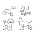 dogs different breeds in outlines set5 vector image