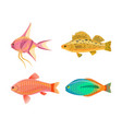jewel cichlid and fish set vector image