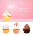 Pink Birthday Card vector image vector image